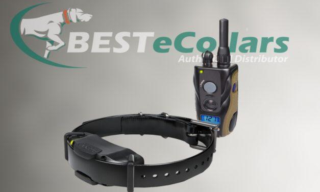 Meet the New Dogtra 1900s Remote E-Collar