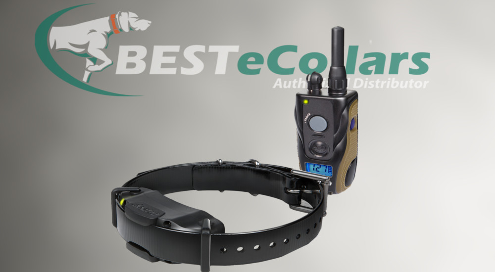 Meet the New Dogtra 1900s Remote E-Collar
