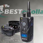 Meet the New Dogtra 280c Remote E-Collar