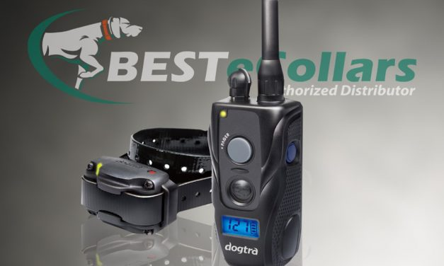 Meet the New Dogtra 280c Remote E-Collar