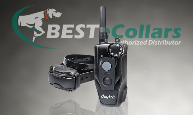 Meet the New Dogtra 200c Remote E-Collar