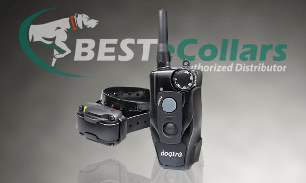 Meet the New Dogtra 200c Remote E-Collar