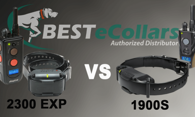 Dogtra 1900 vs 2300: Comparing The Differences